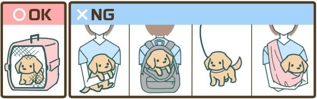 【公共機関でのペットの運び方】